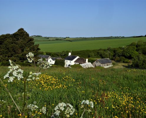 Dittiscombe Holiday Cottages, South Hams