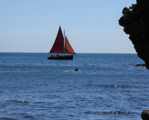 Sailing, South Hams