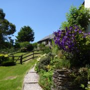 Dog-friendly gardens at Dittiscombe