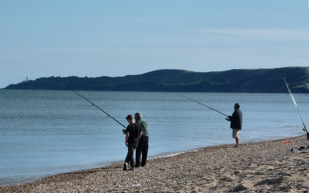 Dog family friendly beaches dittiscombe holiday cottages for Kid friendly fishing near me