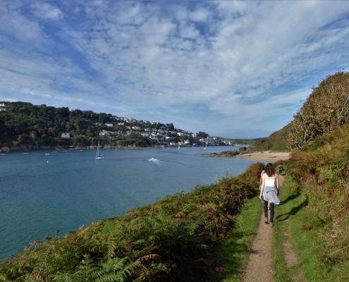 Near Salcombe South Devon