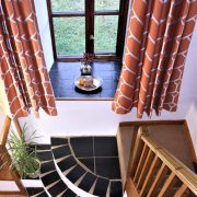 Buddleia, dog friendly cottage Dittiscombe