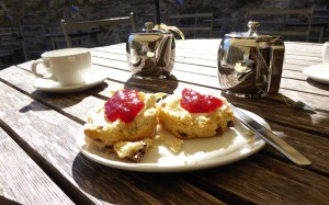 Food & drink in the South Hams
