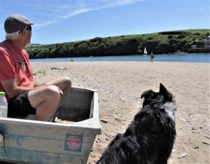 Dog friendly beaches in South Devon