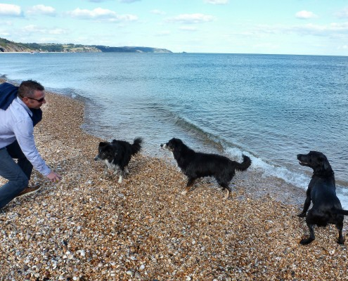Slapton Sands dog friendly