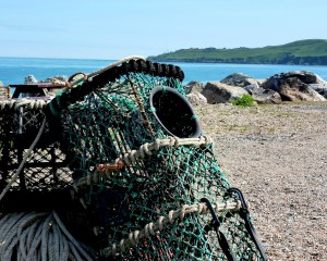 Lobster Pots at Beesands