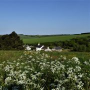Valley and Cottages, Dittiscombe, Slapton, South Devon