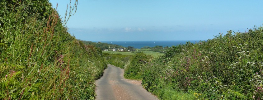 South Devon Lanes