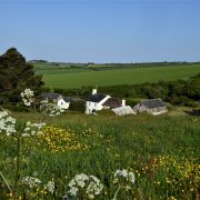 Self catering cottages at Dittiscombe in the South Hams