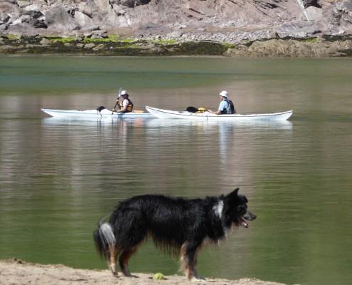 Kayaking on the River Avon