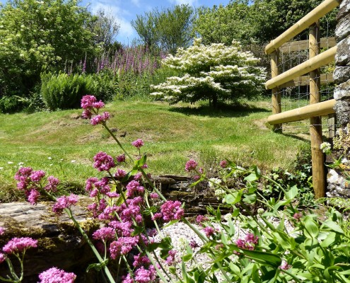 Cottage garden at Dittiscombe