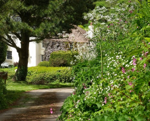 Dittiscombe Holiday Cottages South Devon