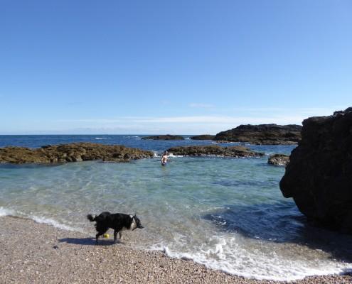 Wild Swimming in South Devon