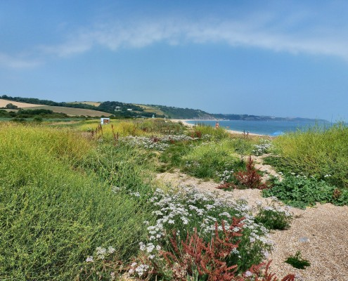 Slapton Sands beach, South Hams