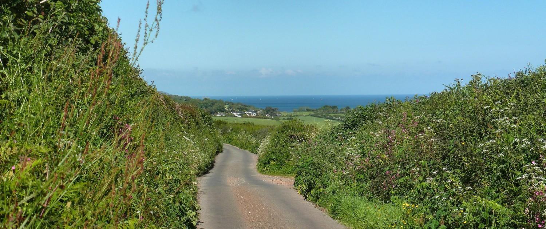 South Devon Lanes