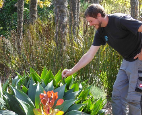 Garden tours at Overbeck's