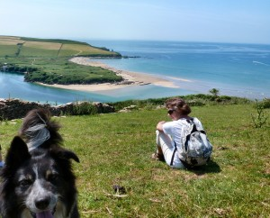Dog friendly South Devon