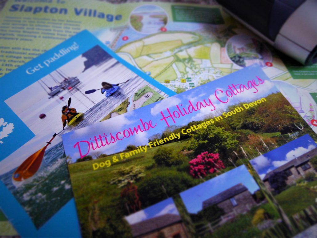 Dittiscombe wish you were here postcard