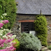 Dittiscombe Dog Friendly Cottages