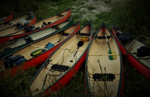 Singing Paddles canoes, South Devon