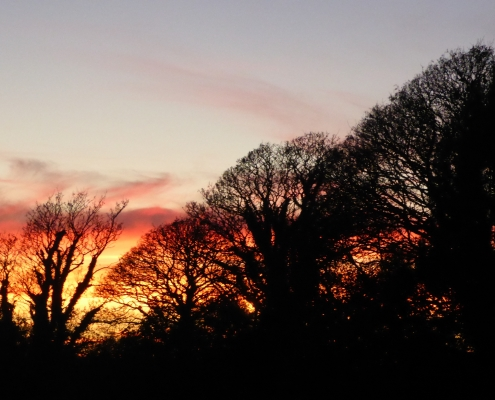 Sunset over Dittiscombe valley,, South Devon