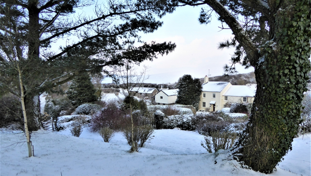 Snowy scenes at Dittiscombe Estate & Cottages