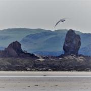 Rocks and Beach at Bantham, South Devon
