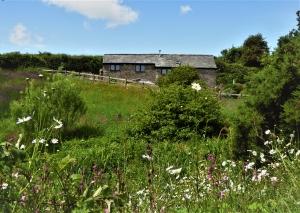 Dog friendly Honeysuckle Cottage at Dittiscombe Estate & Cottages, South Devon