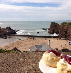 Devon cream tea overlooking Inner Hope