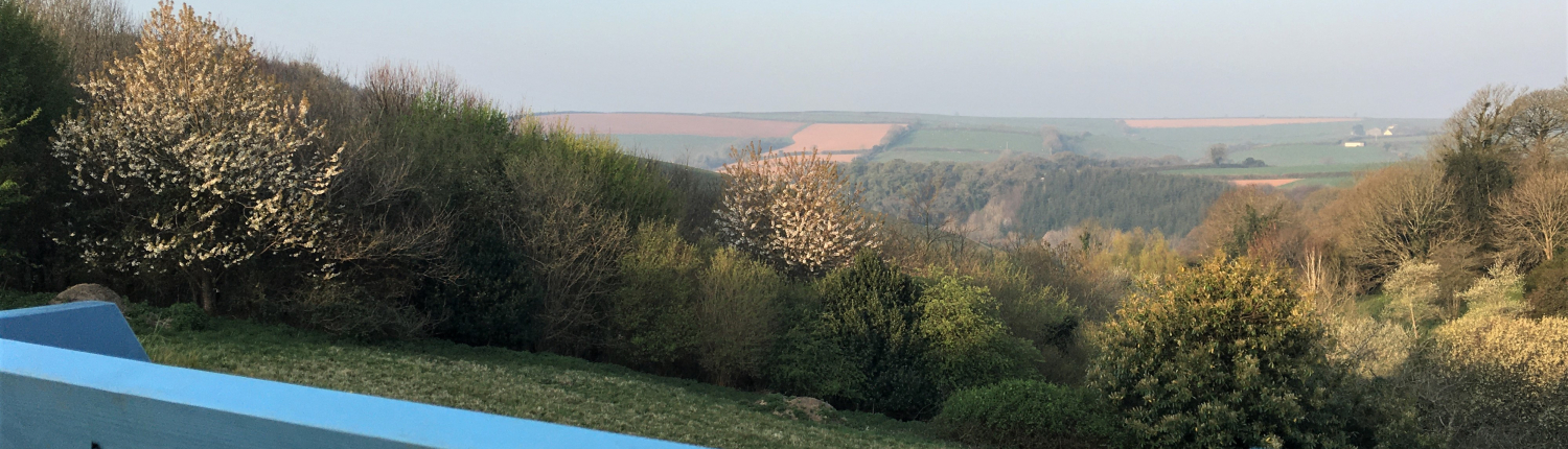 Dittiscombe valley view at sunrise