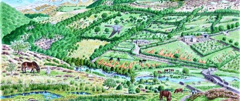 The future look - rewilding the landscape